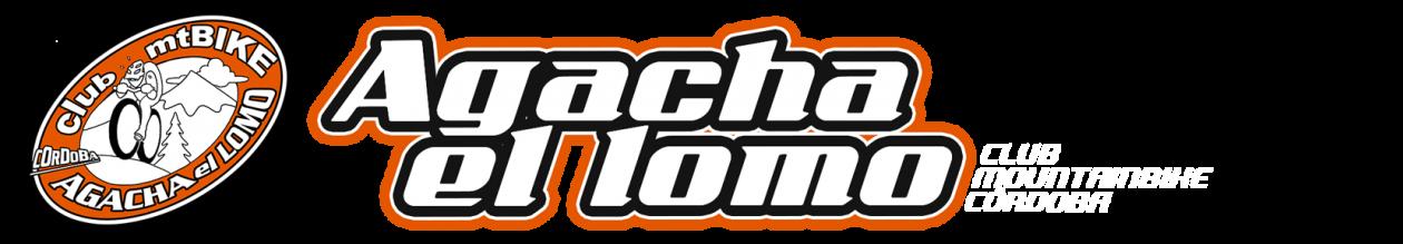 www.agachaelomo.com